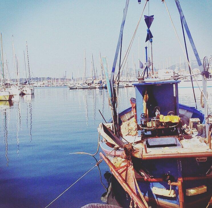 Dernière chose (et pas des moindres), le port de Toulon est à quelques pas !