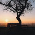 Découvrez 10 spots photo Instagram dans le Jura