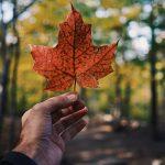 10 spots Instagram incontournables au Canada